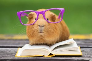 reading great books for spring
