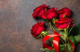 Holiday background with red roses.