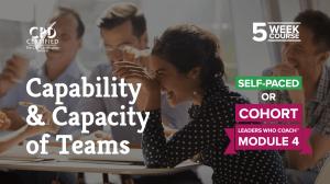 Capability & Capacity