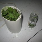 Quick Drying Herbs in the Microwave