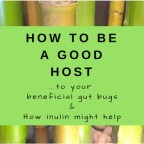 How to Be a Good Host…to Your Beneficial Gut Bugs & How Inulin Might Help