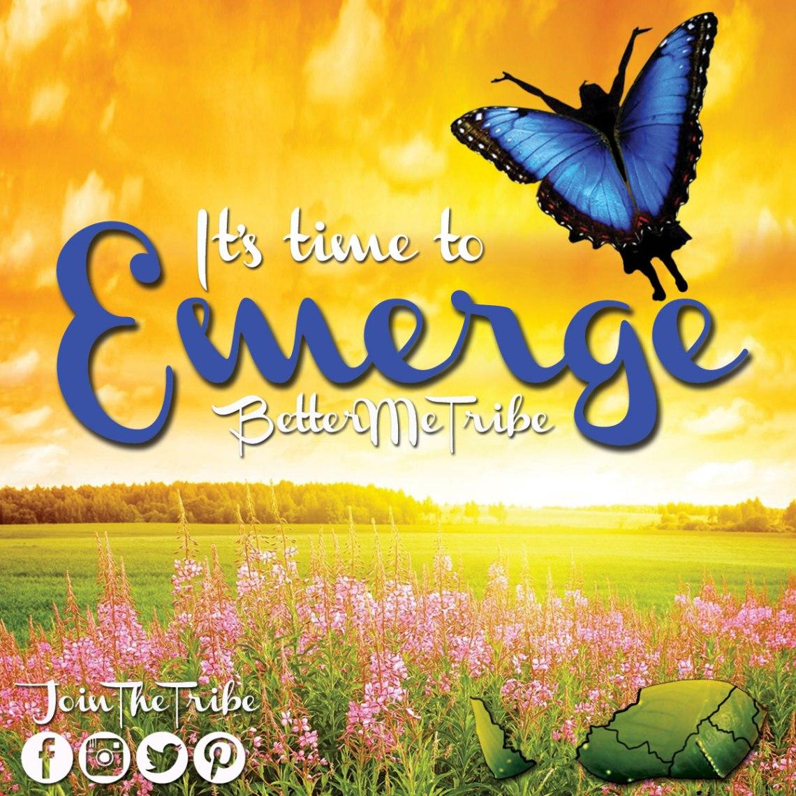 Emerge-Butterfly