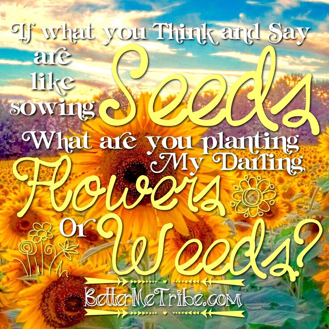 Flowers&Weeds-web