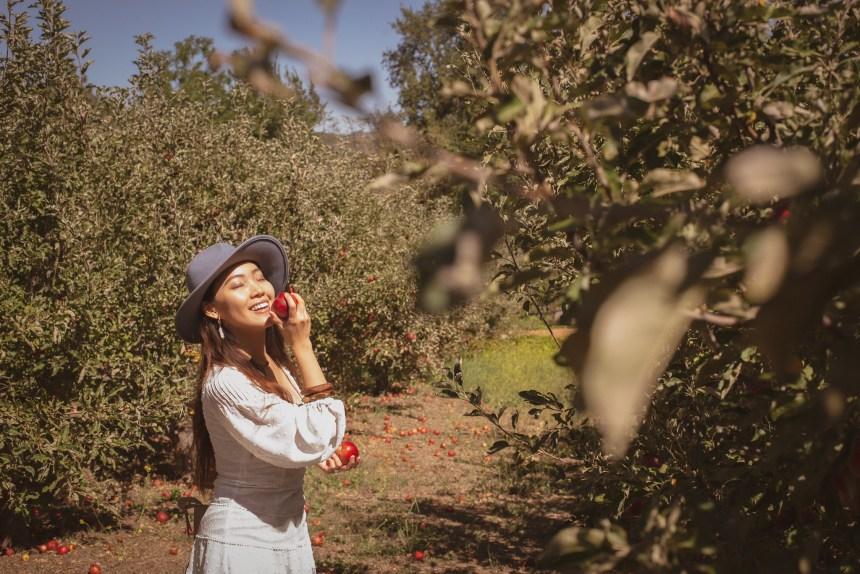 apple farm Julian San diego California