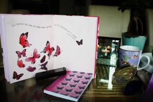 A_Butterfly_konsequenz1