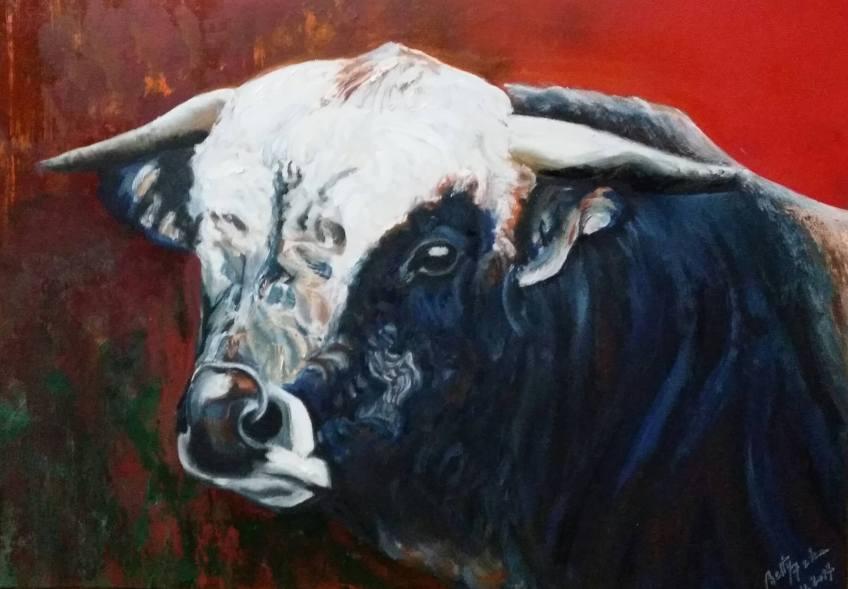toro nº1