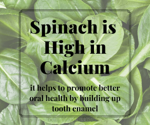 Betty Hayden Dental Social Media Contact Spinach Day