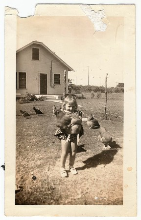 Mom And Chicken