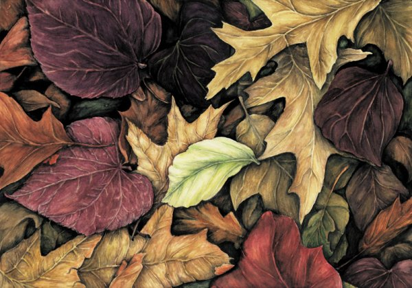 Autumn leaves, watercolour, 1999