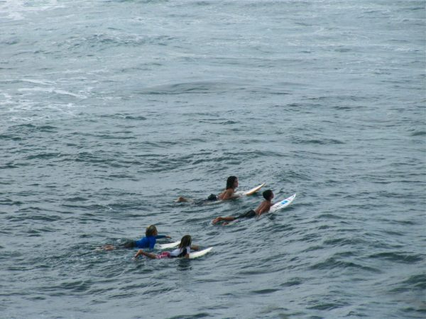 Little kid surfing group