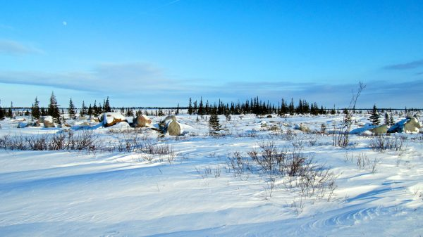 The breathtaking tundra at the Churchill Northern Studies Centre.