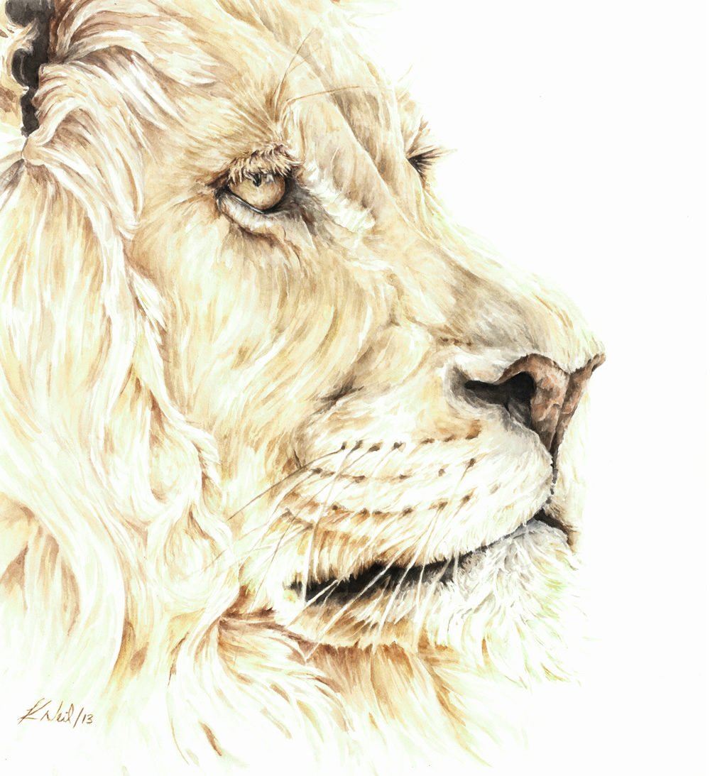 The Lion, watercolour, December 2013