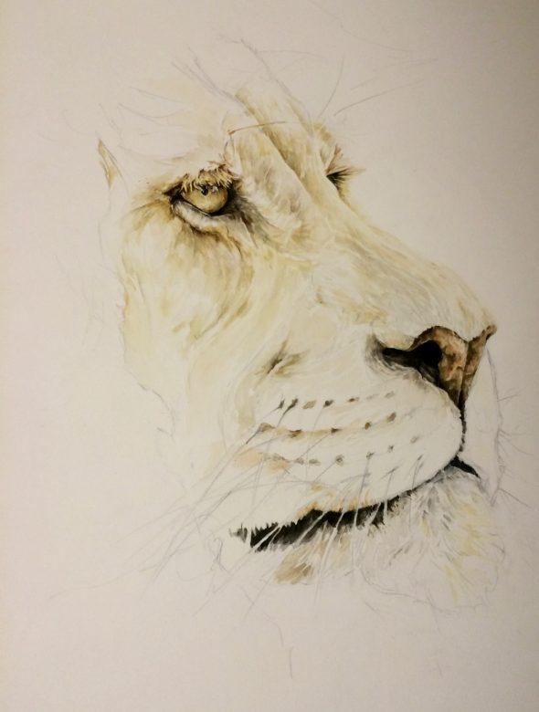 The Lion, Progress shot #2.