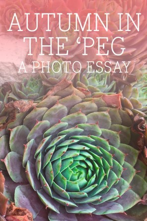 Autumn in the 'Peg, a photo essay