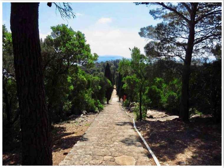 Lokrum Island Path of Paradise