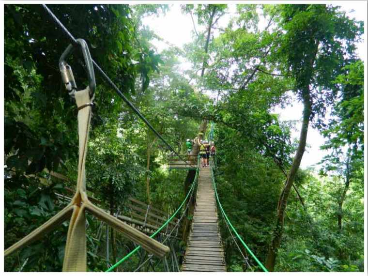 Mystic Mountain Zip Line Tour Jamaica