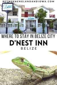 Where to stay in Belize City: D'Nest Inn Review