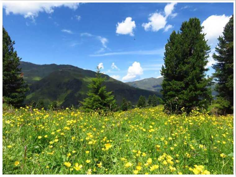 Things to do in Mayrhofen Summer
