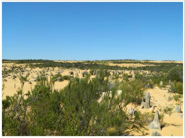 Western Australia Pinnacles Nambung National Park