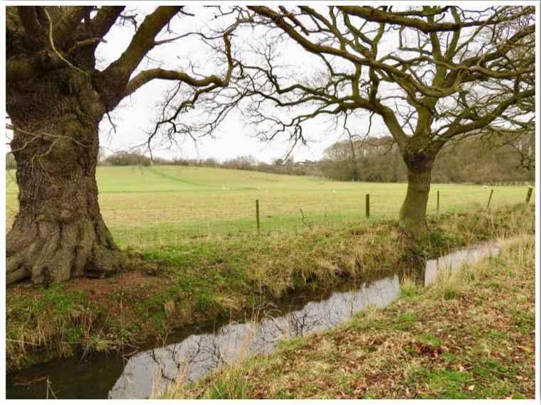 Flatford Suffolk Walk