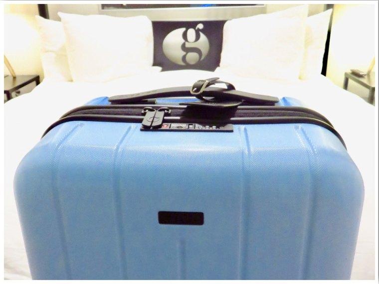 Chester Travel Minima Cabin Case Review