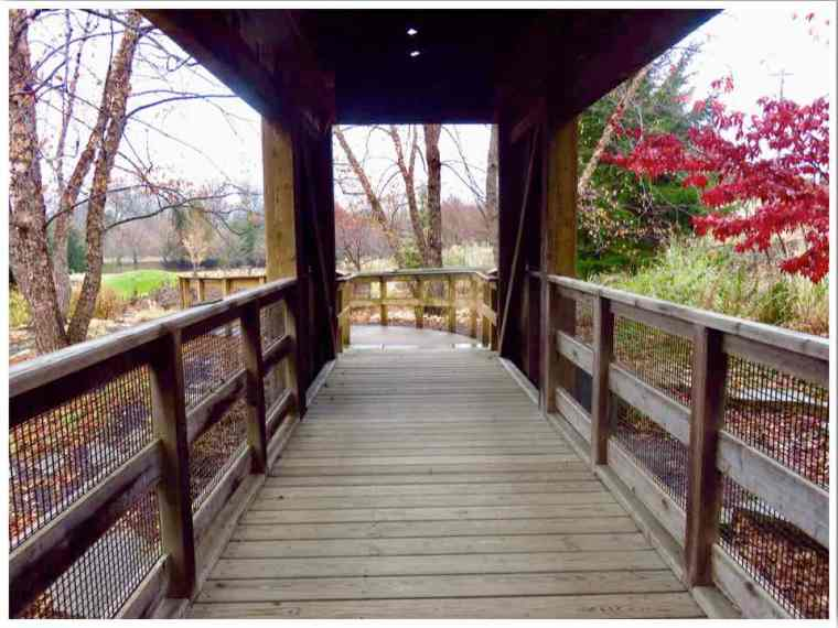 Ames Reiman Gardens Covered Bridge