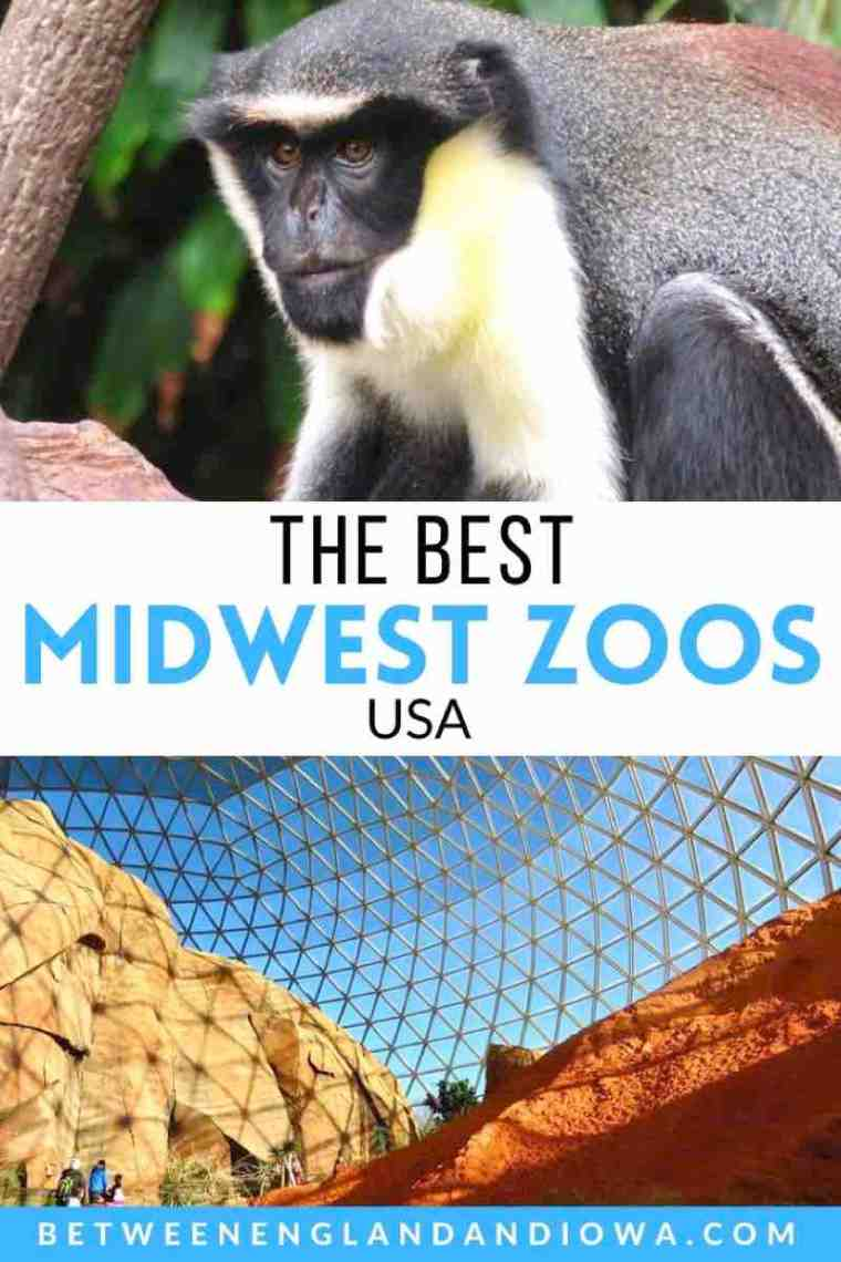 The Best Zoos in the Midwest USA