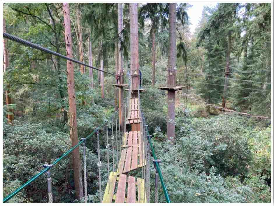 High Rope Obstacle at Go Ape Thetford Forest UK