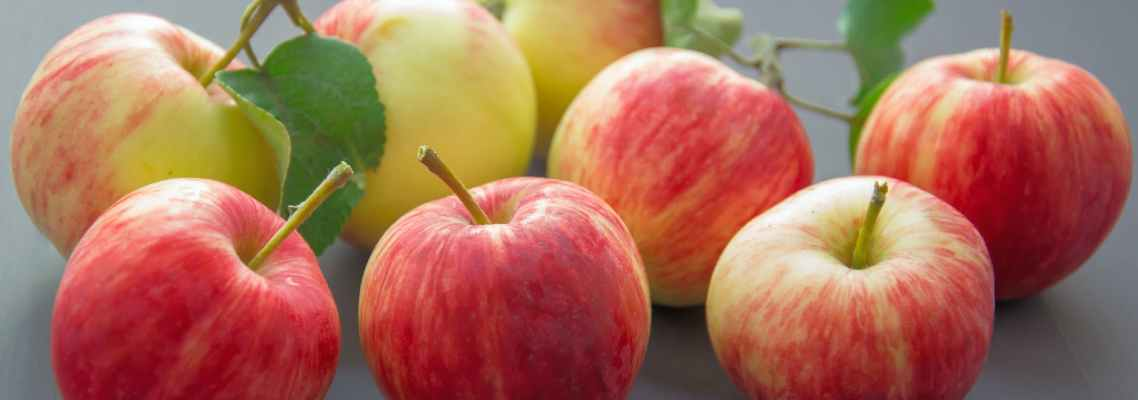 close up photography of apples