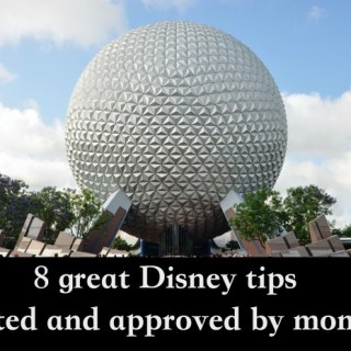 8 great Disney tips and tactics from some of my favorite moms