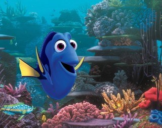 Getting excited for Finding Dory and meeting the new characters