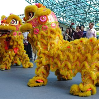 Happy Lunar New Year! Fun facts about the Year of the Dog