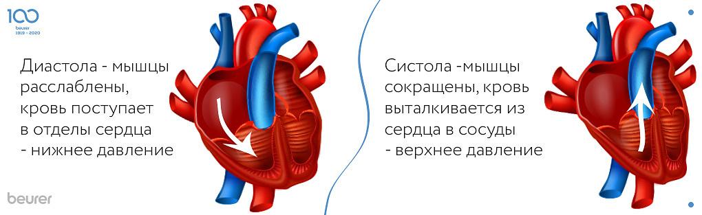 SYSTOLE - ISSIS reduziert, Blut drückte aus dem Herzen in die Gefäße - oberer Druck.jpg