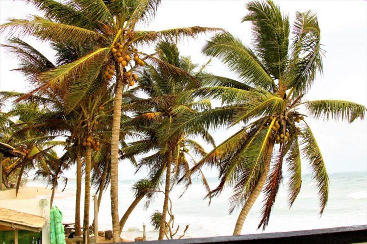 Hikkaduwa Beach in Colombo Sri Lanka