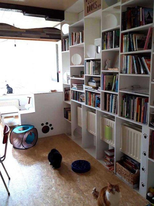 vegan gebak in Brugge Puss and books