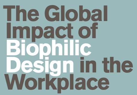 Biophilic design in schools