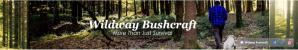 Wildway Bushcraft – Woodland sightseeing