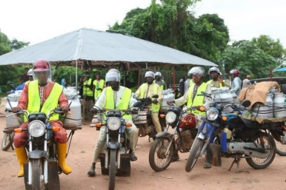 Motorbike riders transporting raw milk in safe cans to  FrieslandCampina WAMCO's Milk Collection Centres in Iseyin, Oyo State