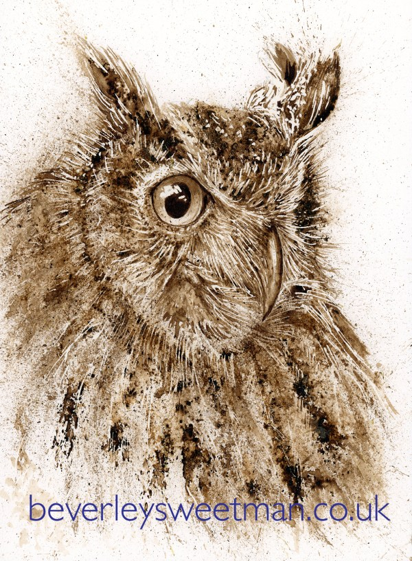 Owl walnut ink painting