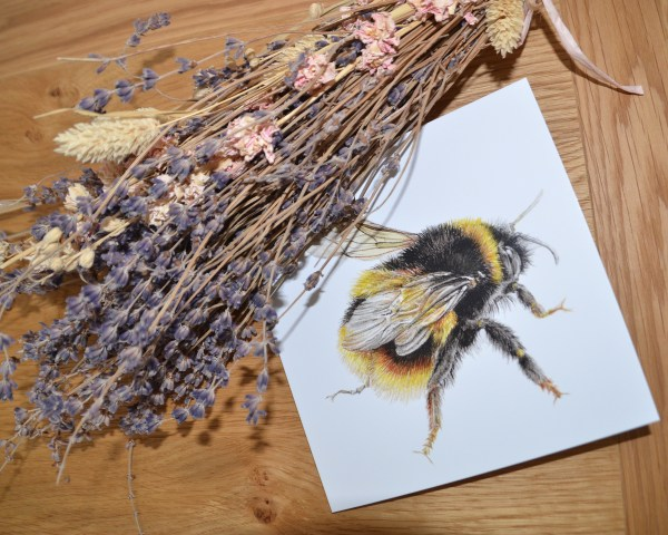 Bumble bee wings greetings card