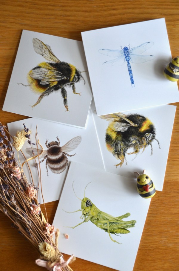 Insect Greetings card set