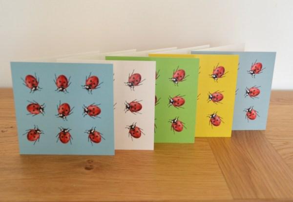 Ladybug greetings card set