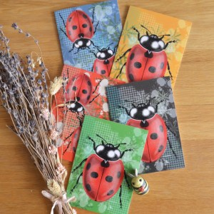 ladybird-card-set