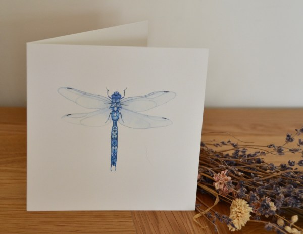 Blue dragonfly Greetings card