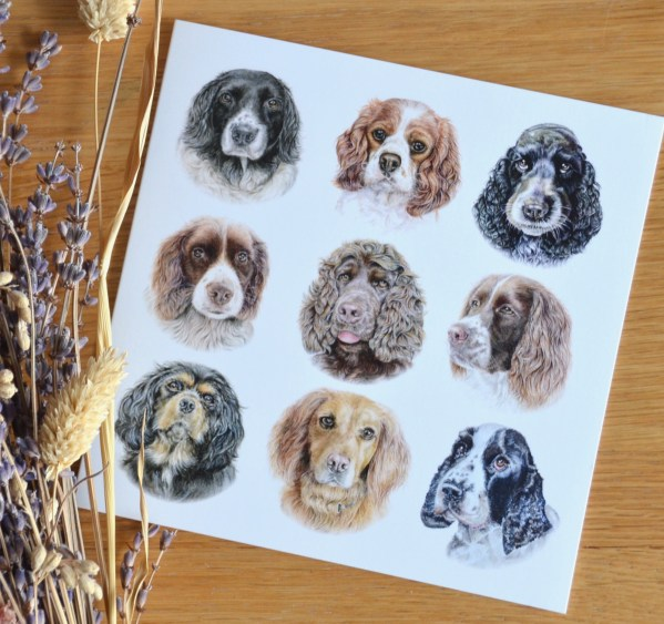 dog-pack-card-spaniels