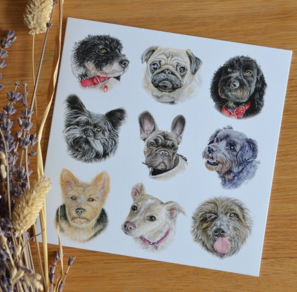 dog-pack-card-small-breeds