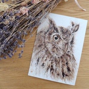 Owl greeting Greetings card