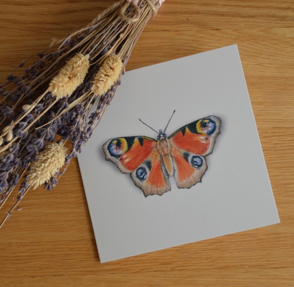 peacock-butterfly-Card