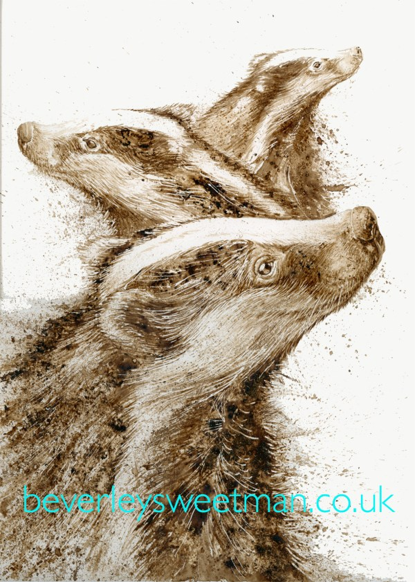 Badgers watercolour painting