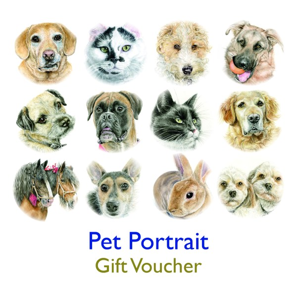 Gift Voucher for Pet Portrait